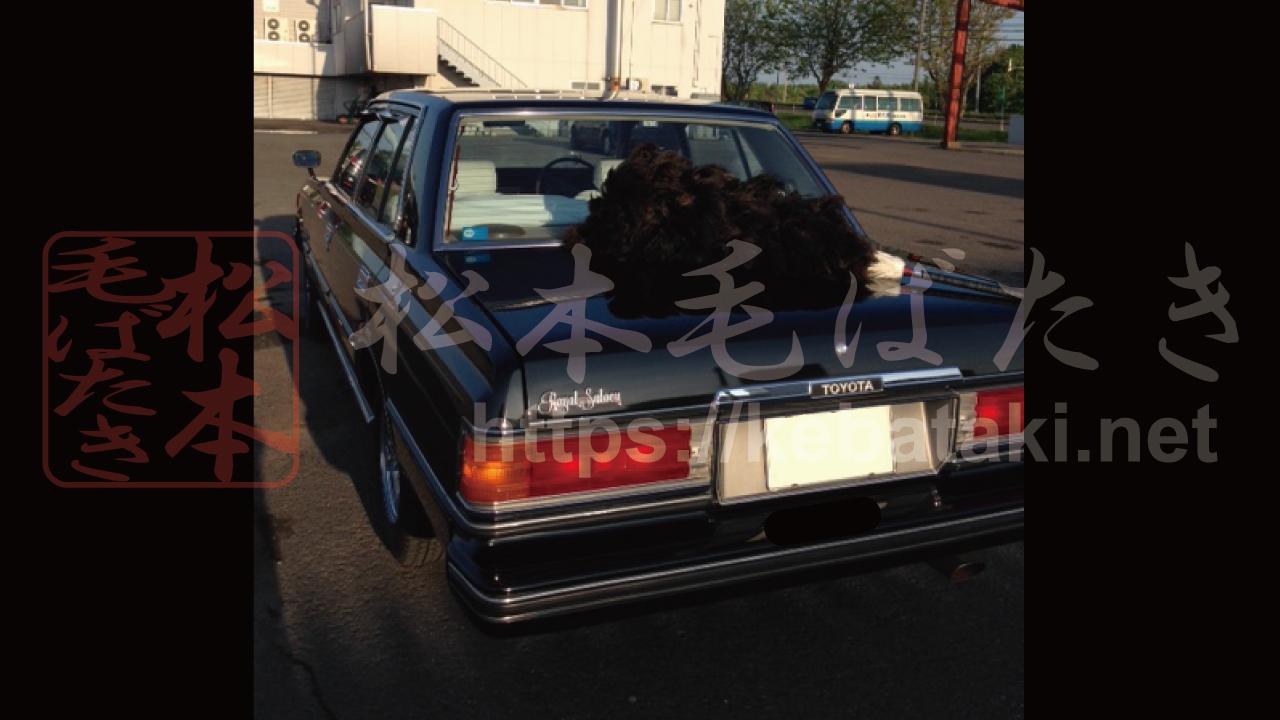 1980年式【昭和55年】トヨタ クラウン ロイヤルサルーン セダン 黒 と 松本毛ばたき